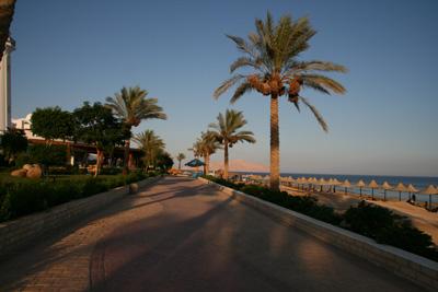 Египет в июле