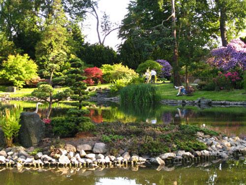Островок. Японский сад, Вроцлав