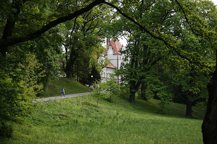 Замок Шенборна, парк