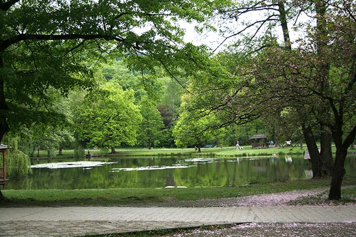 Замок Шенборна, парк, озеро