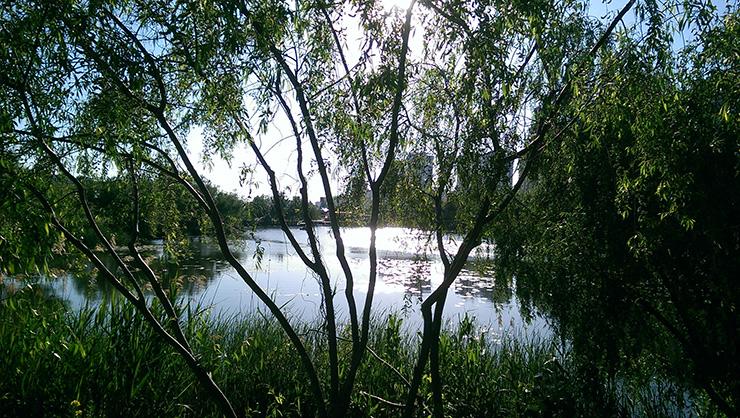 Озеро Позняки